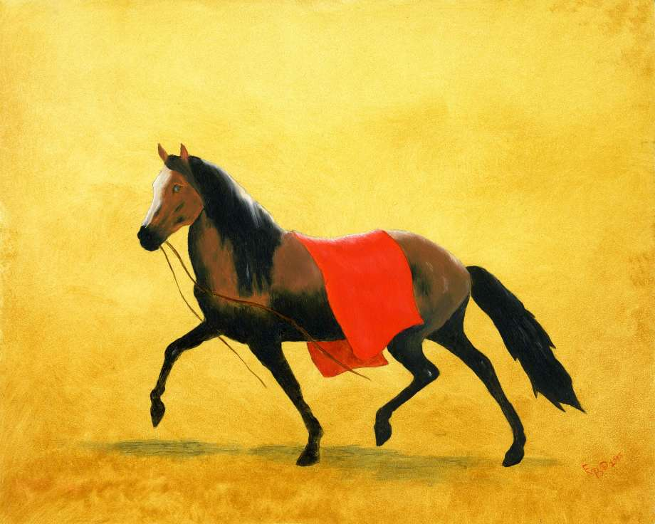 Warrior Pony